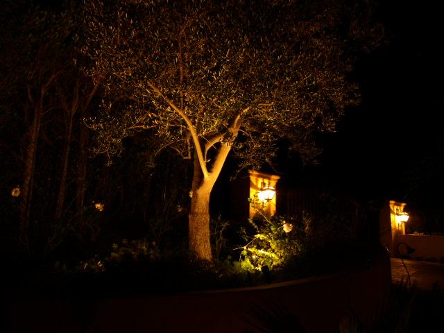 Agoura Hills Lighting Landscape Lights
